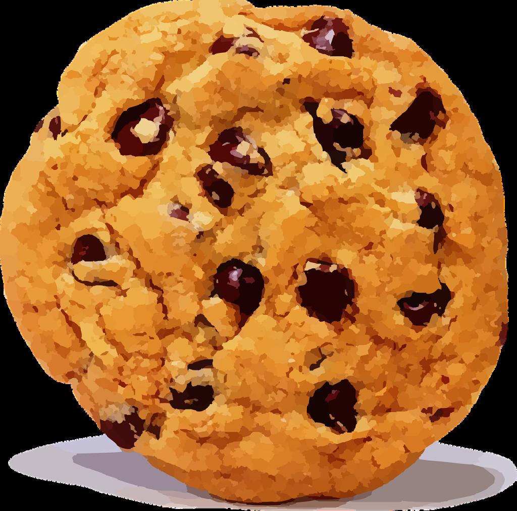 Un Cookie sur https://www.la-boite-naturo.fr ne se mange pas, c'est une sorte de traceur